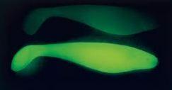 Name:  Leuchtköder 2.JPG Hits: 3506 Größe:  10,4 KB